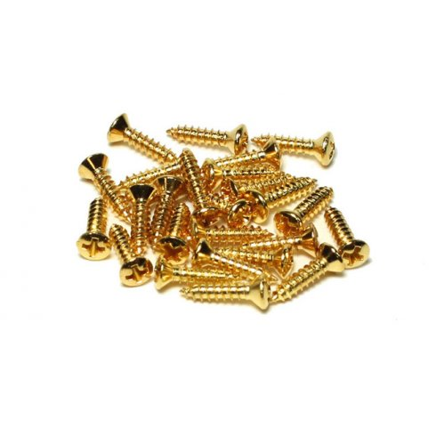 AllParts GS-0006-002 Machine Head Fixing Screws (#3), Phillips Head, Gold, 16-Pack