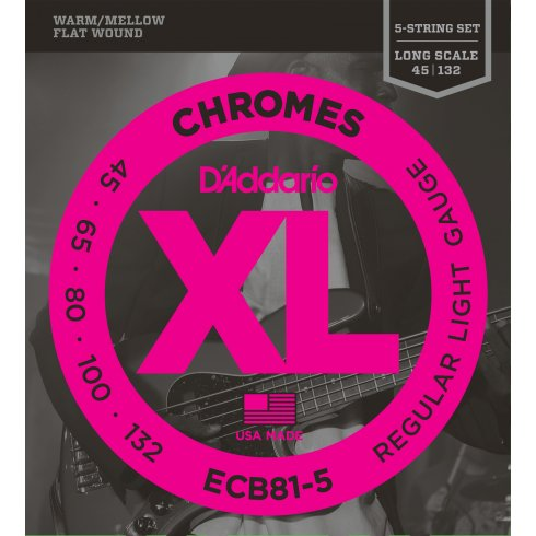D'Addario 5-String ECB81-5 Stainless Steel Flatwound Chromes 45-130 Long Scale Bass Guitar Strings