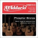 D'Addario EPBB170-5 5-String Phosphor Bronze Acoustic Bass Guitar Strings 45-135 Long Scale
