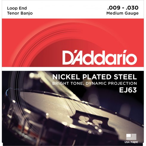 D'Addario EJ63 Tenor Banjo Strings, Nickel Wound, Loop End 09-30