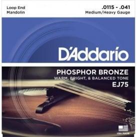 D'Addario EJ75 Mandolin Strings, Phosphor Bronze Wound, Loop End, 11.5-41 Medium-Heavy