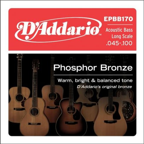D'Addario EPBB170 4-String Phosphor Bronze 45-100 Acoustic Bass Guitar Strings