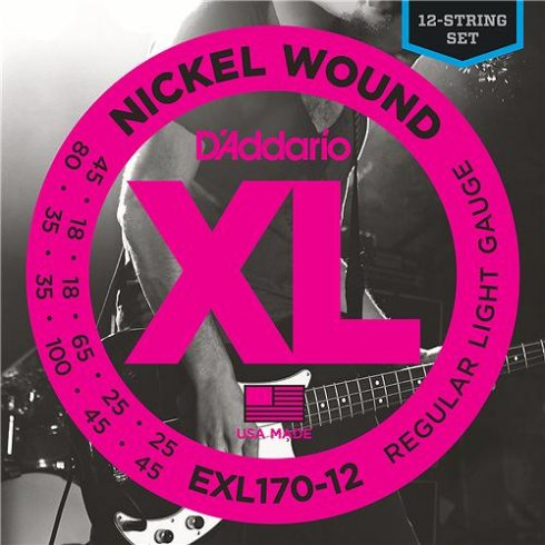 D'Addario EXL170-12 Nickel Wound 12-String Bass Guitar Strings