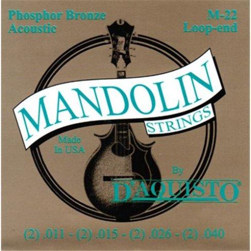 D'Aquisto M22 Phosphor Bronze Mandolin 11-40