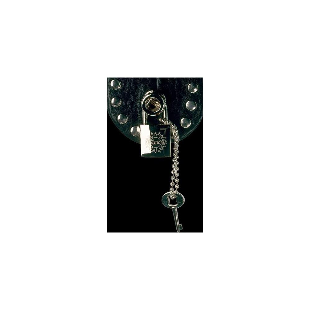 Dimarzio Nickel Security System Guitar Lock DD2100N - Parts from ...
