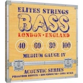 Elites Phosphor Bronze 40-100 Acoustic Bass Strings