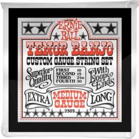 Ernie Ball 10-30 Stainless Steel Tenor Banjo Loop End Strings