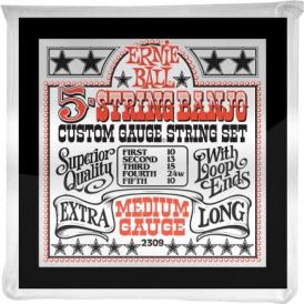 Ernie Ball 5-String 10-24w Stainless Steel Banjo Set - Loop End
