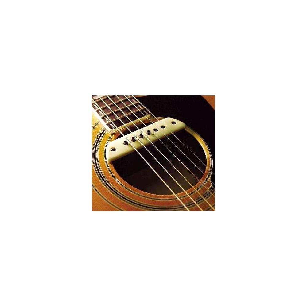 lr baggs m1 active acoustic guitar soundhole pickup. Black Bedroom Furniture Sets. Home Design Ideas