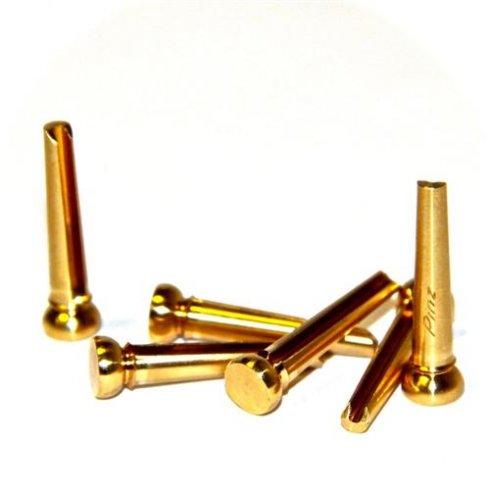 Pinz Brass Acoustic Guitar Bridge Pin Set Brass