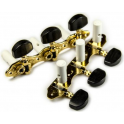 Schaller Hauser Classical Machine Heads, 3-a-Side, Gold with Ebony Buttons